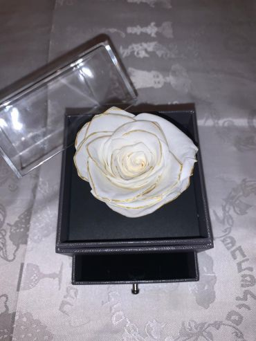 Forever Love Rose That Lasts/Year Individual White Gold Trim