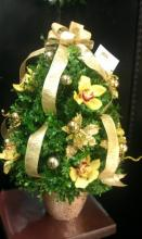 Golden Box Tree Bedazzled With Orchids