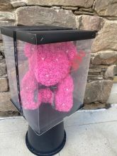 Forever Rose Bear Hot Pink Large W Custom Window Box