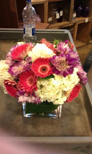 Dahlias, Hydrangeas and Gerberas
