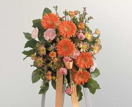 Orange Gerbera Special Funeral Arrangement