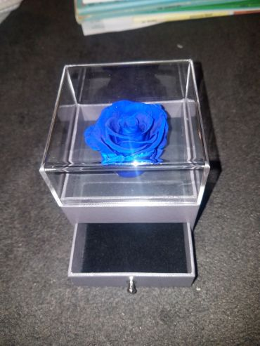 Forever Love Rose That Lasts Year Individual Unit Electric Blue