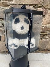 Forever Rose Bear Panda Bear W Custom Window Display Box