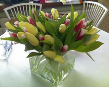 Classic Tulips in Cubed Clear Vase