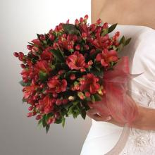 Red Alstroemeria & Hypericum Bridal Bouquet