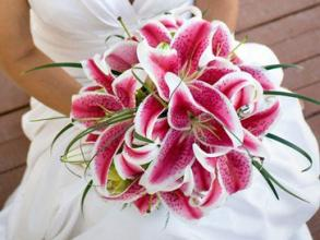 Elegant Stargazer Lily And Lily Grass Bridal Bouquet