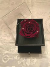 Forever Love Rose That Lasts/Year Individual Dramatic Red Diamon